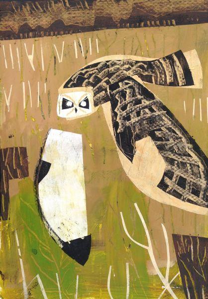 short-eared owl  - wallasea island - acrylic -  48 x 36 cms