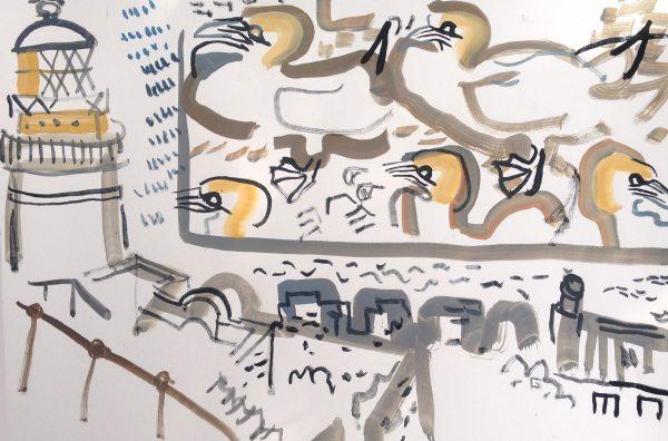 gannets - bass rock - gouache -  38 x 56 cms