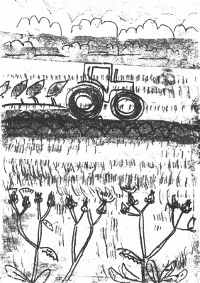 6747bristly oxtongue & plough - wallasea island - monoprint - 29.7 x 21 cms (A4)
