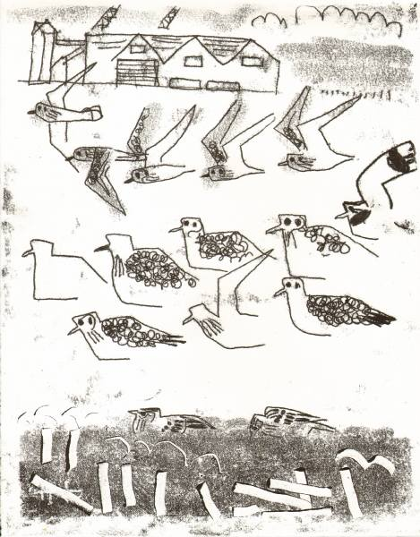 6734golden plover, skylarks, lapwing - wallasea island - monoprint - 38 x 27 cmsProbably the most simple way of monoprinting, hinging paper onto a perspex block that is covered with a thin layer of ink. You then draw on the back with a biro or just press with fingers. The area at the bottom is working back into the ink, scraping and then rollering the back of the paper