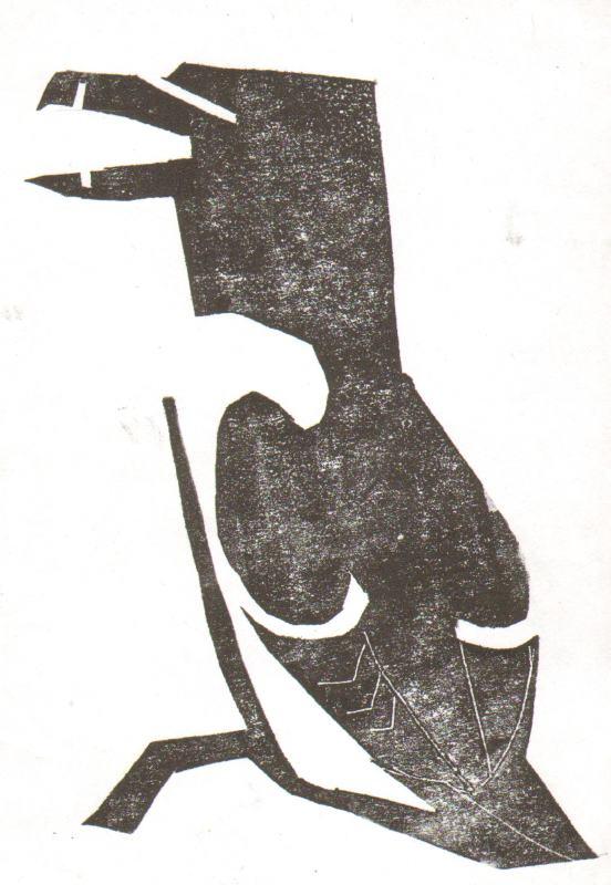 razorbill - st abbs - card print - c. A5
