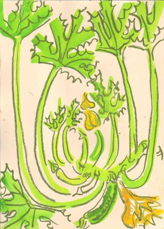 courgette - allotment bristol - gouache & wax crayon -  c. A3