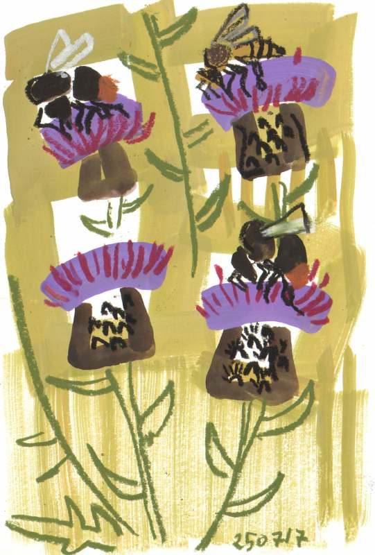 bees on knapweed - allotment bristol - gouache & wax crayon -  c. A3