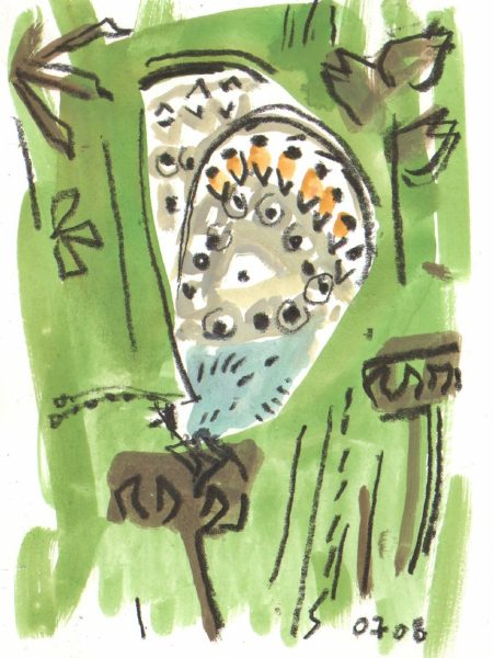 common blue - allotment bristol - gouache & wax crayon -  c. A5