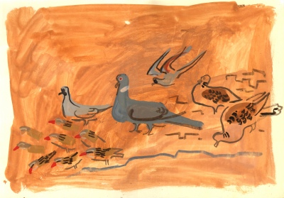 turtle, african mourning, namacqua doves & qualia - dry sahel west of richard toll - gouache - 35 X 50 cms