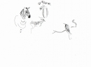 102‐5708<b>zebra, impala & bee-eater</b>inkpen29.7 x 42 cms (A3)£50&#8208;Greg&nbsp;Poole
