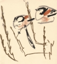 <b>long-tailed tits</b>   chew valley lake   wax crayon   32 x 28 cms   £50‐Greg Poole