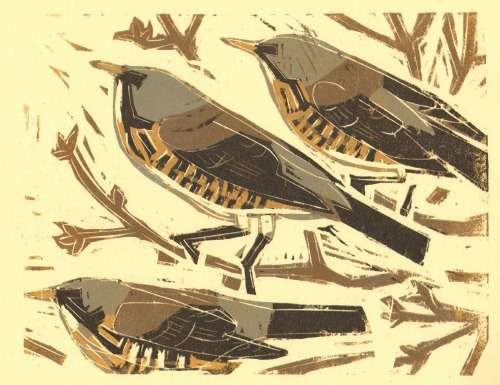 <b>fieldfares</b>      reduction woodcut   20 x 25 cms   &#8208;Greg&nbsp;Poole