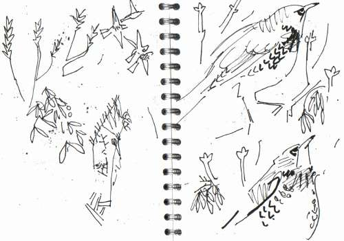 <b>fieldfare in ash,poplar, mistletoe</b>      permanent marker   A5 sketchbook   &#8208;Greg&nbsp;Poole