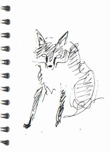 bl-001   <b>fox</b>   mendips    ink pen   A6 sketchbook   &#8208;Greg&nbsp;Poole
