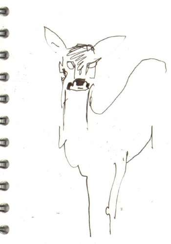 bl-002  <b>roe deer</b>  mendips   ink pen  A6 sketchbook  &#8208;Greg&nbsp;Poole