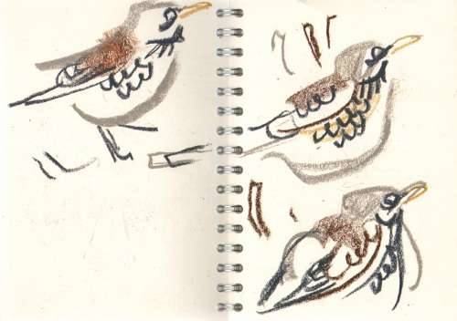 bl-009   <b>fieldfares</b>   mendips   wax crayon      &#8208;Greg&nbsp;Poole