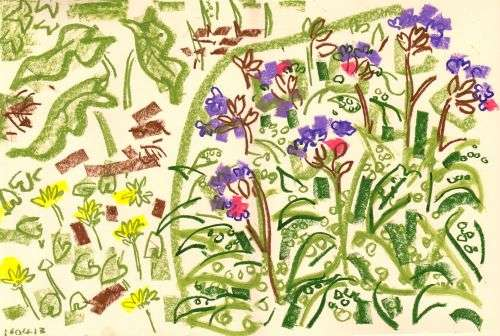 101&#8208;6261&emsp;<b>pulmonaria</b>&emsp;garden, bristol&emsp;oil pastel&emsp;38 x 56 cms&emsp;&#8208;Greg&nbsp;Poole