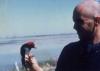 <b>Ringing a Red-headed woodpecker, Ontario 1985</b> &emsp;  &emsp;  &emsp;  &emsp;&#8208;Greg&nbsp;Poole