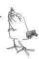 101‐6377<b>moorhen</b>permanent markerA5 sketchbook‐GregPoole