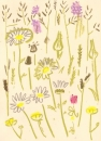 175‐6176 <b>common-spotted orchid, ox-eye daisy, goatsbeard</b> mendips wax crayon 38 x 28 cms £120&#8208;Greg&nbsp;Poole