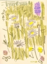175‐6177 <b>common-spotted orchid, ox-eye daisy,buttercups</b> mendips wax crayon 38 x 28 cms £120&#8208;Greg&nbsp;Poole