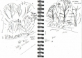 25&#8208;6456&emsp;<b>meadow fringe, alder & willow</b>&emsp;bristol reservoirs&emsp;ink pen&emsp;A5 sketchbook&emsp;&#8208;Greg&nbsp;Poole