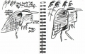 101‐6349 <b>grey heron</b> bristol reservoirs permanent marker A5 sketchbook ‐Greg Poole