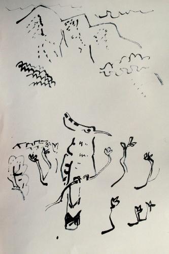 hoopoe, sierra de gredos