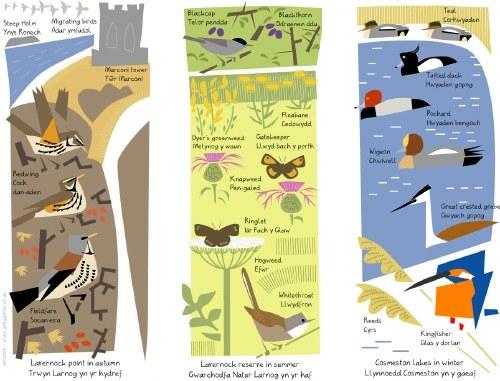 lavernock point, reserve & cosmeston lakes interpretation images