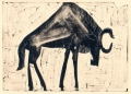 110‐6009 <b>wildebeest</b> kruger, south afrca monoprint & acrylic,monotype 24 x 36 cms £90‐Greg Poole