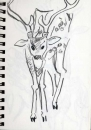 <b>spotted deer</b>      graphite   A5 notebook pages   NFS&#8208;Greg&nbsp;Poole