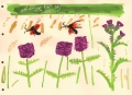 181‐6238 <b>burnet moths, betony & meadow thistle</b> bristol reservoirs gouache 28 x 38cms £110&#8208;Greg&nbsp;Poole