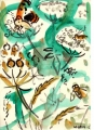 71‐6121 <b>small copper, hoverflies & hogweed</b> bristol reservoirs gouache 29.7 x 42 cms (A3) £120&#8208;Greg&nbsp;Poole