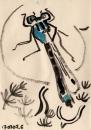 76‐4137<b>blue-tailed damselfly</b>A5 (14.5 x 21 cms)£30&#8208;Greg&nbsp;Poole