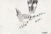 white-bellied go-away-bird ‐ ink pen ‐ 12 x 18 cms ‐ £40 ‐ ethiopia‐Greg Poole