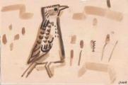 sidamo lark ‐ gouache ‐ 18 x 24 cms ‐ £45 ‐     ethiopia‐GregPoole