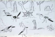 bush crows, ground squirrel, von der decken's hornbill & crowned plover ‐ ink pen ‐ 24 x 36 cms ‐ £70 ‐     ethiopia‐Greg Poole