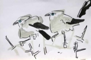 bush crows ‐ graphite & wax crayon ‐ 24 x 36 cms ‐ £40 ‐     ethiopia‐Greg Poole