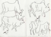 bush crows & cattle ‐ ink pen ‐  ‐ £40 ‐     ethiopia‐Greg Poole