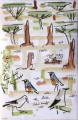 bush crows, starlings & ground squirrel ‐ gouache & wax crayon ‐ 36 x 24 cms ‐ £150 ‐     ethiopia‐Greg Poole