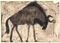 110‐6017 <b>wildebeest </b> kruger, south afrca monotype 24 x 36 cms SOLD‐Greg Poole