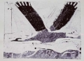 66‐3440 <b>flying crane</b>  monoprint c. A4 (21 x 29.7cms) ‐Greg Poole
