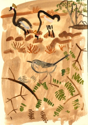 spectacled warbler & crowned cranes