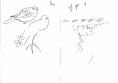 211&#8208;6853&emsp;<b>turtle doves & sand martins</b>&emsp;djoudj sahel&emsp;ink pen&emsp;A5 sketchbook&emsp;&#8208;Greg&nbsp;Poole