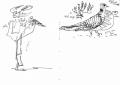 211&#8208;6859&emsp;<b>turtle & african mourning doves</b>&emsp;djoudj sahel&emsp;ink pen&emsp;A6 sketchbook&emsp;&#8208;Greg&nbsp;Poole