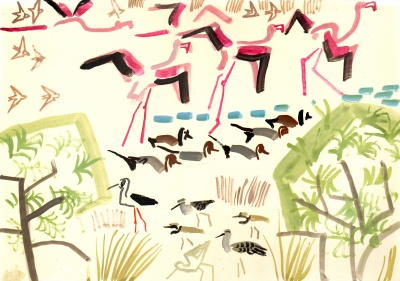 <i></i><br/>flamingos,pintail, whistling duck, waders & sand martins