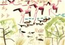 213‐6886<b>flamingos,pintail, whistling duck, waders & sand martins</b>djoudj grand lacgouache35 X 50 cms‐GregPoole
