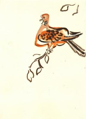 <i></i><br/>turtle dove
