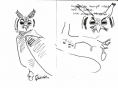 208‐6809<b>verraux's eagle owl</b>savannah nr. palmarinink penA5 sketchbook&#8208;Greg&nbsp;Poole