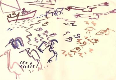 <i></i><br/>rising tide, egrets, waders & pelicans
