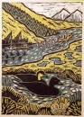 1‐4984 <b>common scoter</b>  woodcut 53 x 38 cms £POA‐Greg Poole