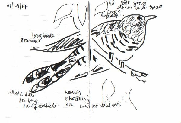 mini meadow 2014 – birds