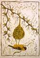 ba4  <b>masked weaver nest building 2</b>  kruger, south afrca  reduction woodcut  73 x 52 cms  £270&#8208;Greg&nbsp;Poole