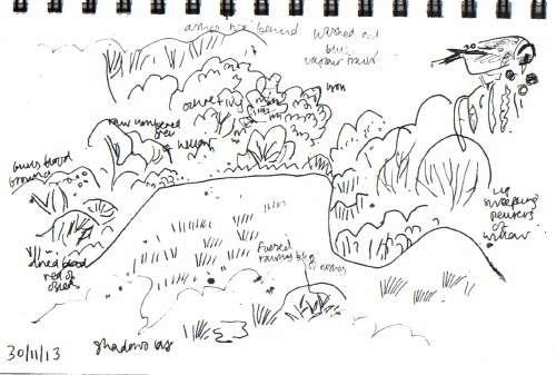wet meadow & goldfinch